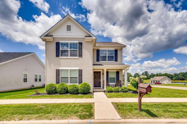 331 Middleburn Street, Johnstown, OH 43031 (MLS #219023169) :: The Clark Group @ ERA Real Solutions Realty