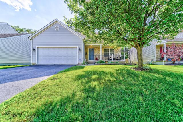 333 Iris Trail Drive, Galloway, OH 43119 (MLS #219023181) :: Brenner Property Group | Keller Williams Capital Partners