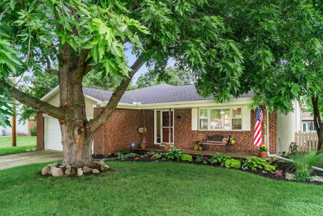 534 Braxton Place E, Westerville, OH 43081 (MLS #219023188) :: Brenner Property Group | Keller Williams Capital Partners