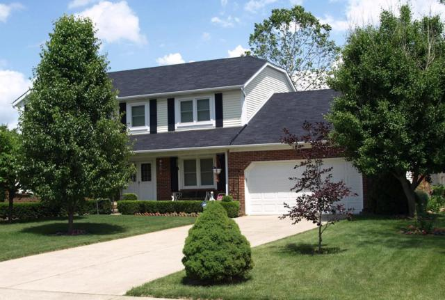 1222 Youngland Drive, Columbus, OH 43228 (MLS #219023283) :: Signature Real Estate