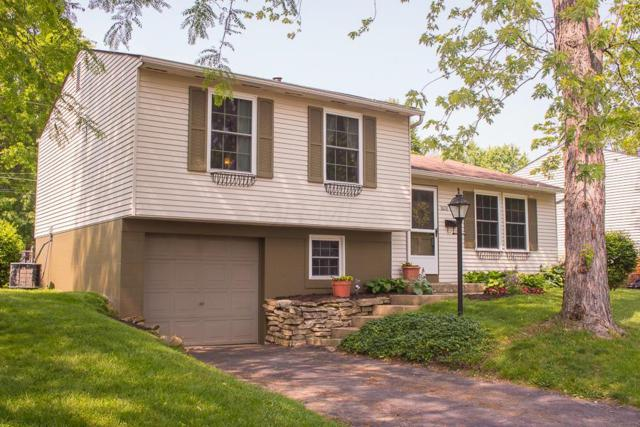 3608 Makassar Drive, Westerville, OH 43081 (MLS #219023294) :: Signature Real Estate