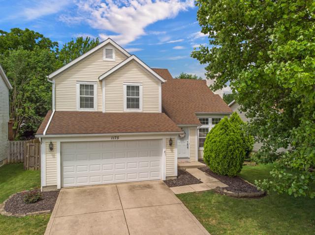 1175 Wexford Green Boulevard, Columbus, OH 43228 (MLS #219023492) :: Signature Real Estate