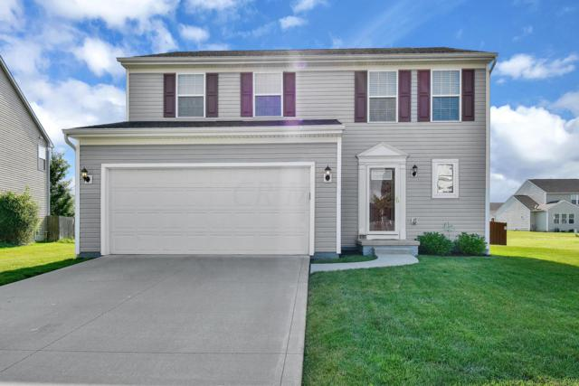 5747 Little Red Rover Street, Groveport, OH 43125 (MLS #219023497) :: Signature Real Estate