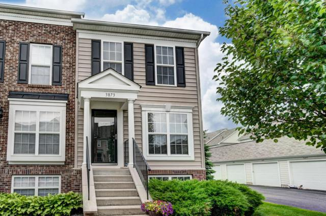 3873 Dowitcher Lane, Columbus, OH 43230 (MLS #219023541) :: Keith Sharick | HER Realtors