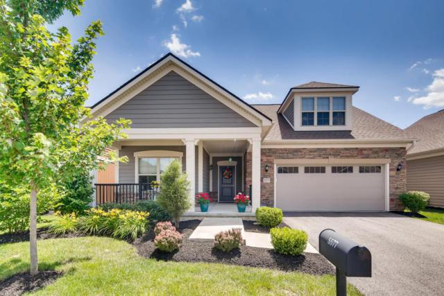 5577 Lexington Drive, Hilliard, OH 43026 (MLS #219023568) :: Huston Home Team