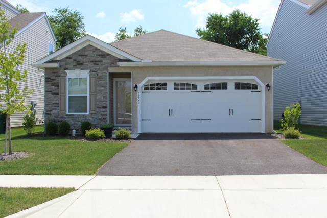 5206 Macclellan Street S, Groveport, OH 43125 (MLS #219023787) :: RE/MAX ONE