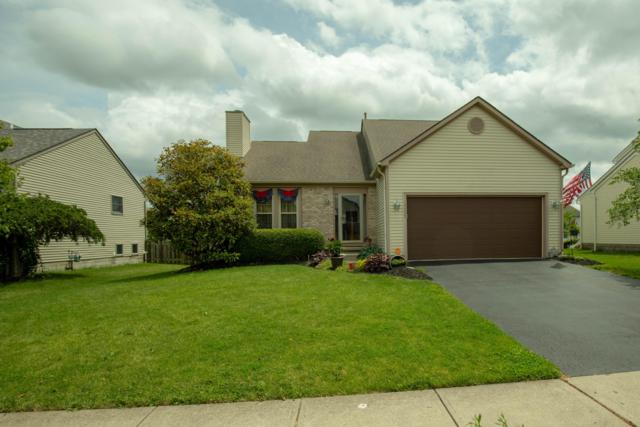 1113 Tarragon Drive, Marysville, OH 43040 (MLS #219023960) :: The Raines Group