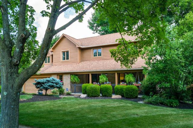 674 River Trace Road, Westerville, OH 43081 (MLS #219024185) :: Signature Real Estate