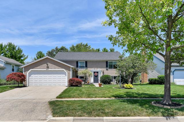 5376 Davidson Road, Hilliard, OH 43026 (MLS #219024195) :: Signature Real Estate