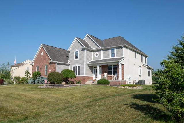 13535 Church View Drive, Pickerington, OH 43147 (MLS #219024396) :: The Raines Group