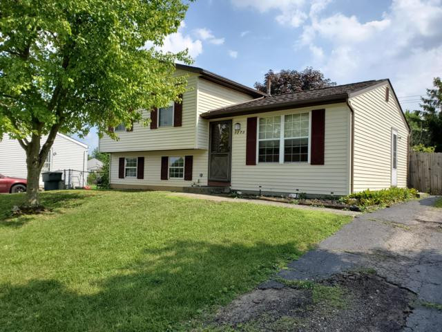 5273 Silverberry Court, Columbus, OH 43228 (MLS #219024539) :: Signature Real Estate