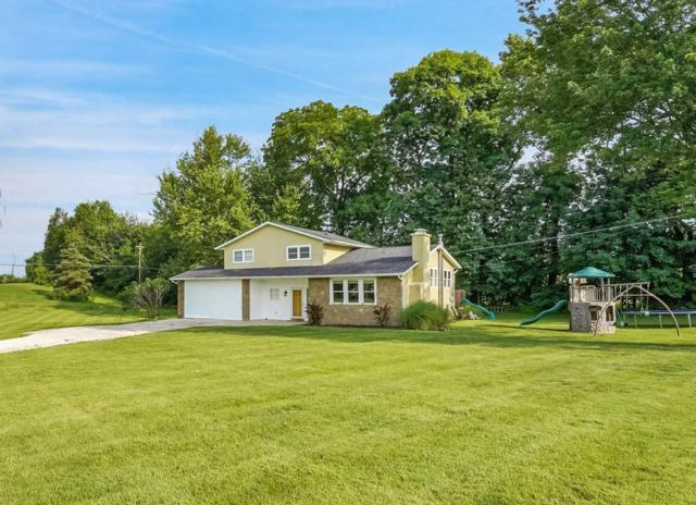 7208 Kimberly Court, Westerville, OH 43082 (MLS #219024595) :: RE/MAX ONE