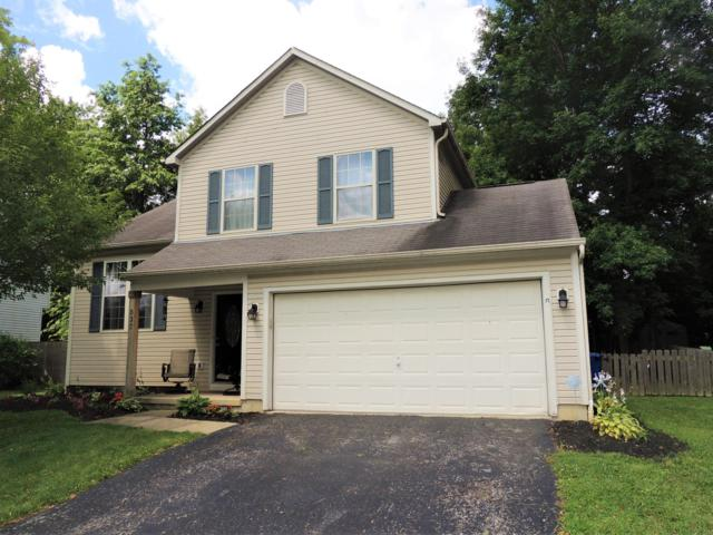 537 Thistle Drive, Delaware, OH 43015 (MLS #219024676) :: RE/MAX ONE