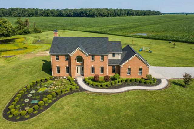 17703 Walnut Creek Pike, Ashville, OH 43103 (MLS #219024751) :: Berkshire Hathaway HomeServices Crager Tobin Real Estate