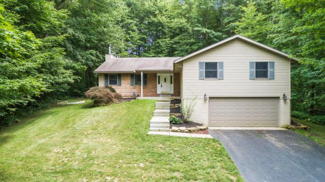 2512 Apple Valley Drive, Howard, OH 43028 (MLS #219024796) :: Berkshire Hathaway HomeServices Crager Tobin Real Estate