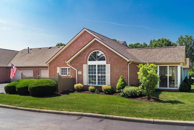 6801 Winrock Drive, New Albany, OH 43054 (MLS #219025067) :: Huston Home Team