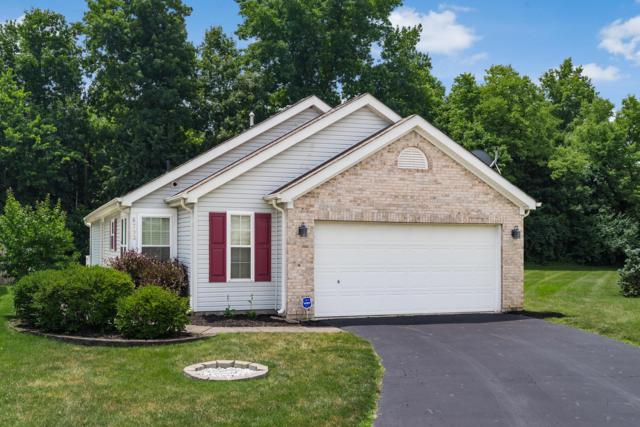 6793 Riding Trail Drive, Canal Winchester, OH 43110 (MLS #219025098) :: Signature Real Estate