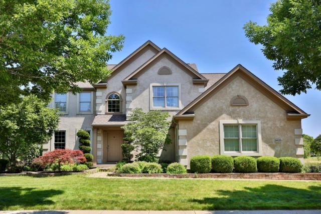 6620 Ballantrae Place, Dublin, OH 43016 (MLS #219025142) :: Shannon Grimm & Partners Team