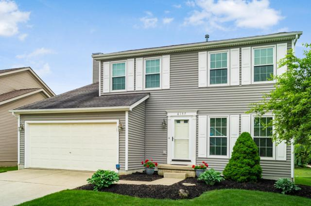 6157 Jimson Drive, Galloway, OH 43119 (MLS #219025210) :: Huston Home Team