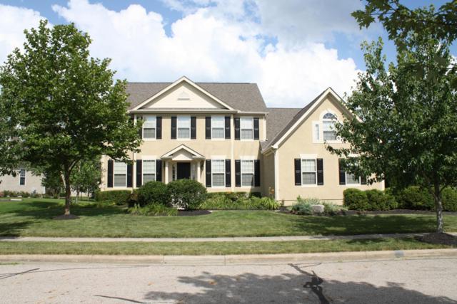 7429 Trevenia Drive, Blacklick, OH 43004 (MLS #219025214) :: Signature Real Estate