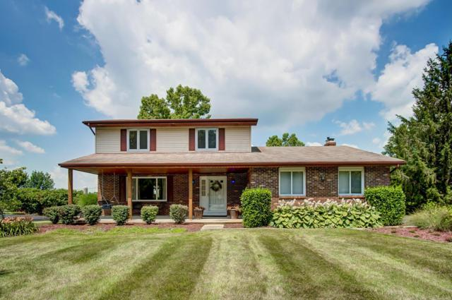 3423 Rolling Hills Lane, Grove City, OH 43123 (MLS #219025337) :: RE/MAX ONE