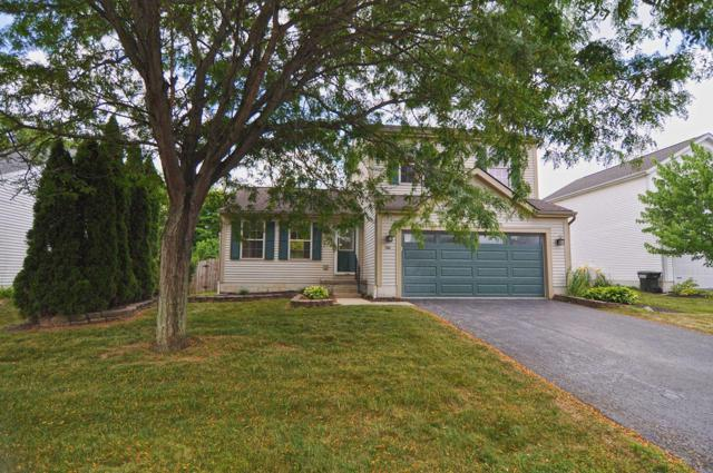 8593 Major Place, Galloway, OH 43119 (MLS #219025402) :: Huston Home Team