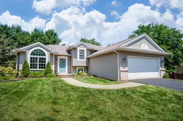 54 E Hiawatha Drive, Powell, OH 43065 (MLS #219025441) :: Huston Home Team