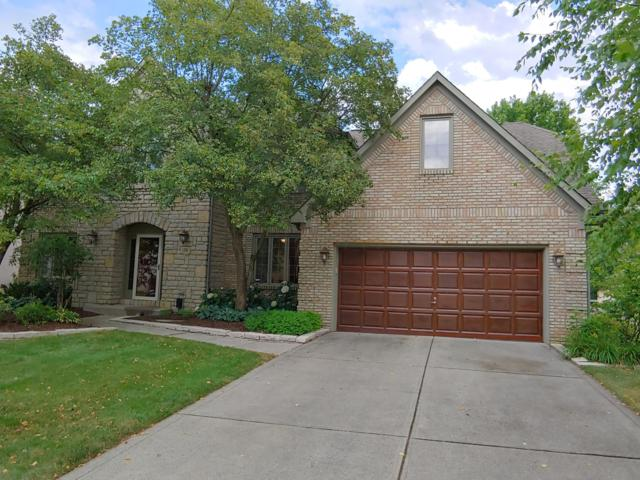 178 Granby Place W, Westerville, OH 43081 (MLS #219025465) :: Huston Home Team