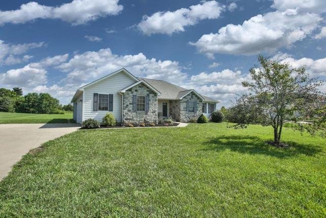 10080 Fairfield Farms Drive, Canal Winchester, OH 43110 (MLS #219025469) :: Berkshire Hathaway HomeServices Crager Tobin Real Estate