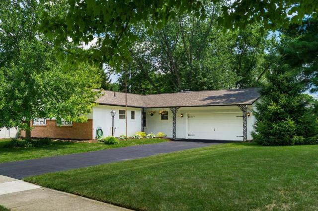 625 Berkeley Place S, Westerville, OH 43081 (MLS #219025479) :: Huston Home Team