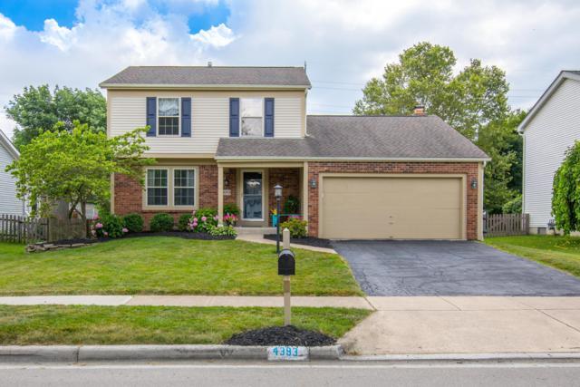 4393 Swenson Street, Hilliard, OH 43026 (MLS #219025555) :: Signature Real Estate