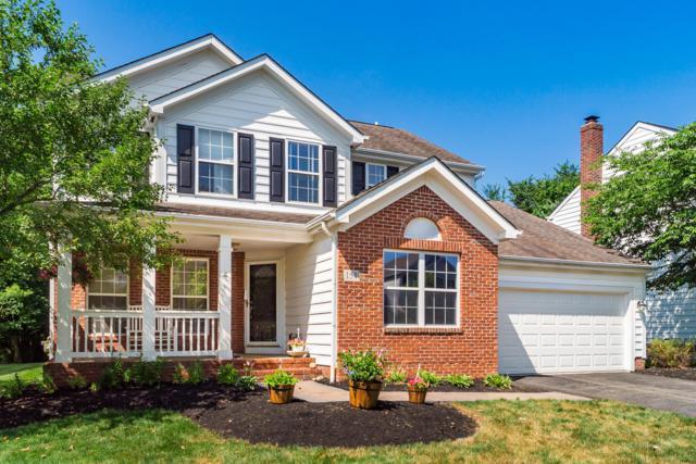 151 Timber Oak Drive, Powell, OH 43065 (MLS #219025562) :: Signature Real Estate