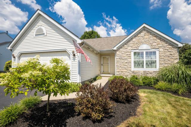 7976 Gladshire Boulevard, Lewis Center, OH 43035 (MLS #219025579) :: Berkshire Hathaway HomeServices Crager Tobin Real Estate