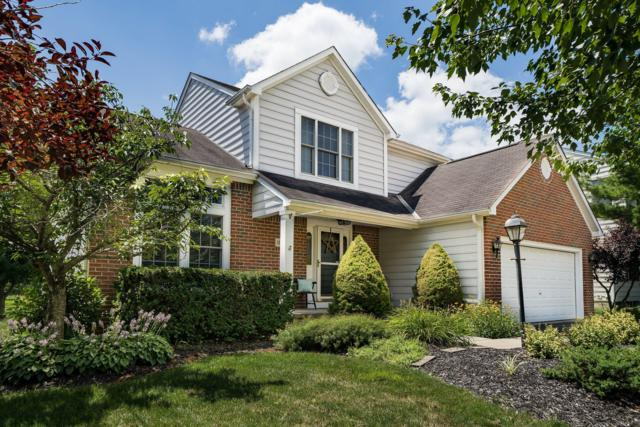 1856 Whites Court, Lewis Center, OH 43035 (MLS #219025617) :: Berkshire Hathaway HomeServices Crager Tobin Real Estate