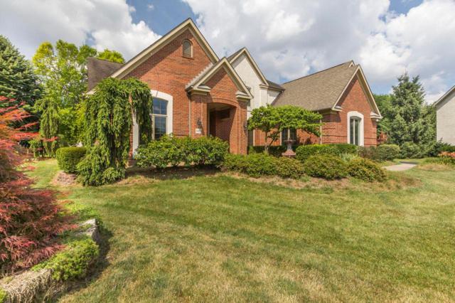 3463 Stonevista Lane, Columbus, OH 43221 (MLS #219025663) :: Berkshire Hathaway HomeServices Crager Tobin Real Estate
