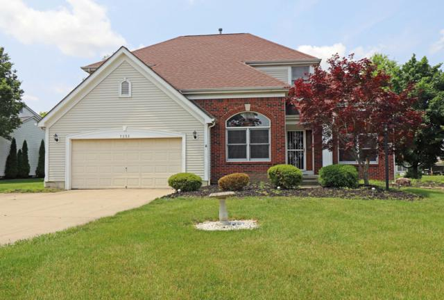 7251 Snowberry Lane, Canal Winchester, OH 43110 (MLS #219025739) :: Shannon Grimm & Partners