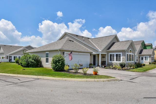 967 Governors Circle, Lancaster, OH 43130 (MLS #219025778) :: RE/MAX ONE