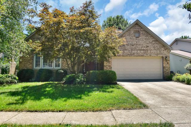 615 Bridgewater Court, Westerville, OH 43081 (MLS #219025831) :: RE/MAX ONE
