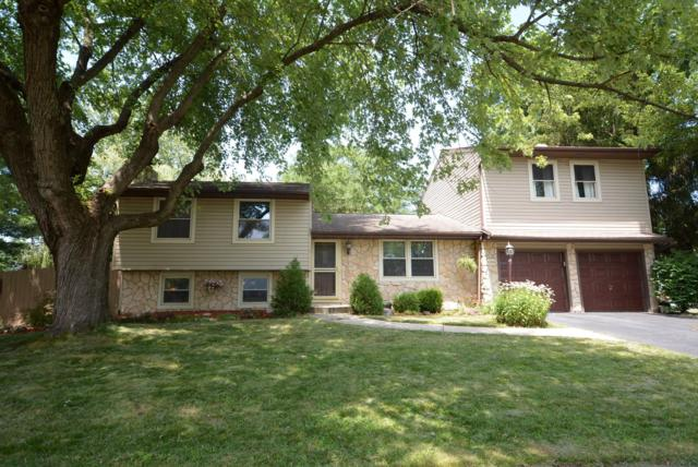 4314 Valley Quail Boulevard N, Westerville, OH 43081 (MLS #219025832) :: RE/MAX ONE