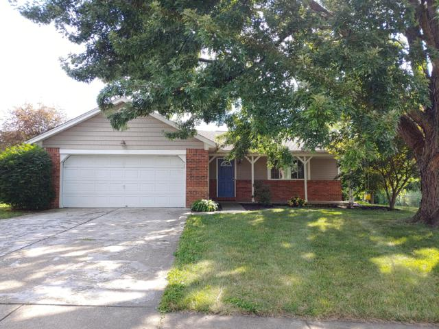 295 Caro Lane, Gahanna, OH 43230 (MLS #219025851) :: The Raines Group