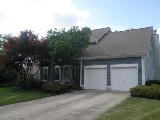 911 Dianthus Court, Reynoldsburg, OH 43068 (MLS #219025857) :: RE/MAX ONE