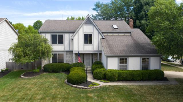 810 Mountainview Drive, Westerville, OH 43081 (MLS #219025870) :: RE/MAX ONE