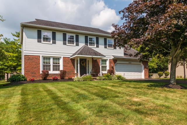 10256 Fairfax Drive, Pickerington, OH 43147 (MLS #219025927) :: Shannon Grimm & Partners