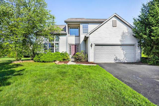 7480 Bent Oak Court, Lewis Center, OH 43035 (MLS #219025992) :: Signature Real Estate