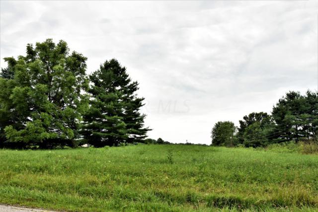 6911 Benner Road, Johnstown, OH 43031 (MLS #219026050) :: Keith Sharick | HER Realtors