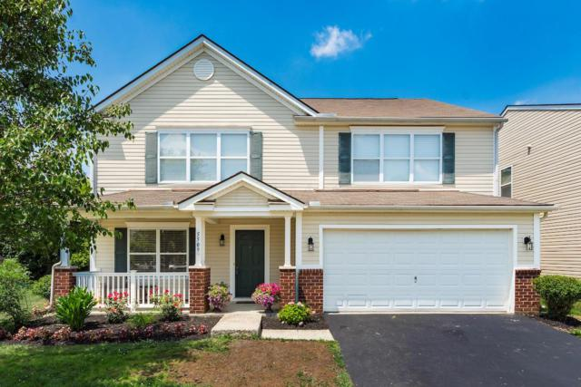 5509 Rothermund Drive, Canal Winchester, OH 43110 (MLS #219026126) :: The Raines Group