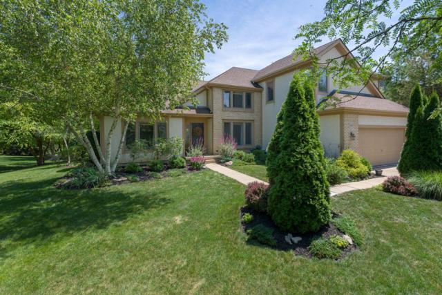 5685 Beechmont Drive, Lewis Center, OH 43035 (MLS #219026141) :: CARLETON REALTY