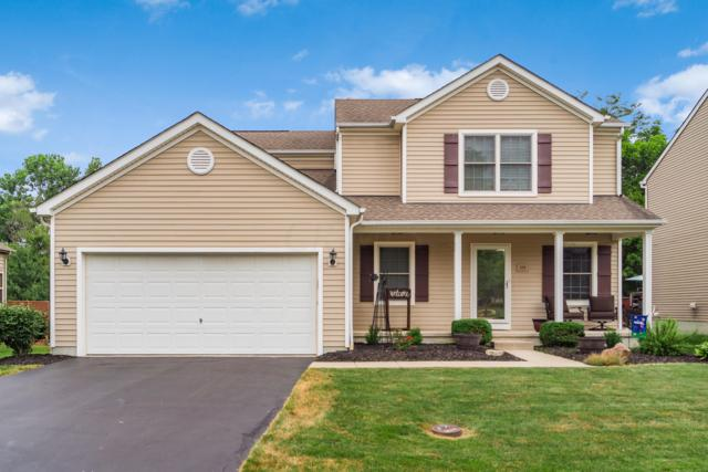 229 Crystal Petal Drive, Delaware, OH 43015 (MLS #219026178) :: Brenner Property Group | Keller Williams Capital Partners