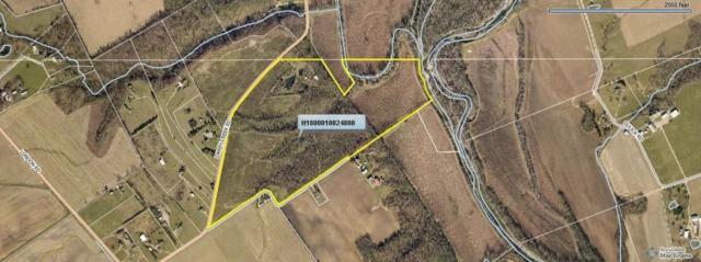 14130 Darby Creek Road, Orient, OH 43146 (MLS #219026246) :: Keller Williams Excel