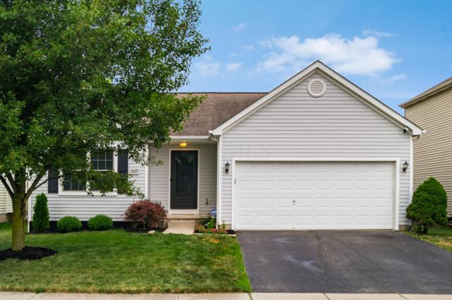 2075 Winding Hollow Drive, Grove City, OH 43123 (MLS #219026317) :: Exp Realty